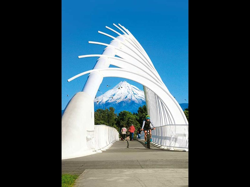 taranaki art preview bigger