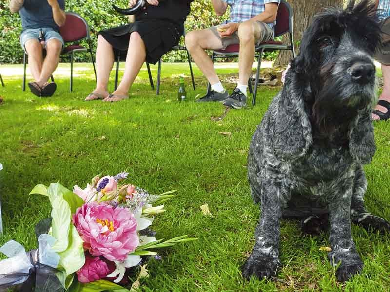 Minnie was a bemused but very well behaved bridesmaid