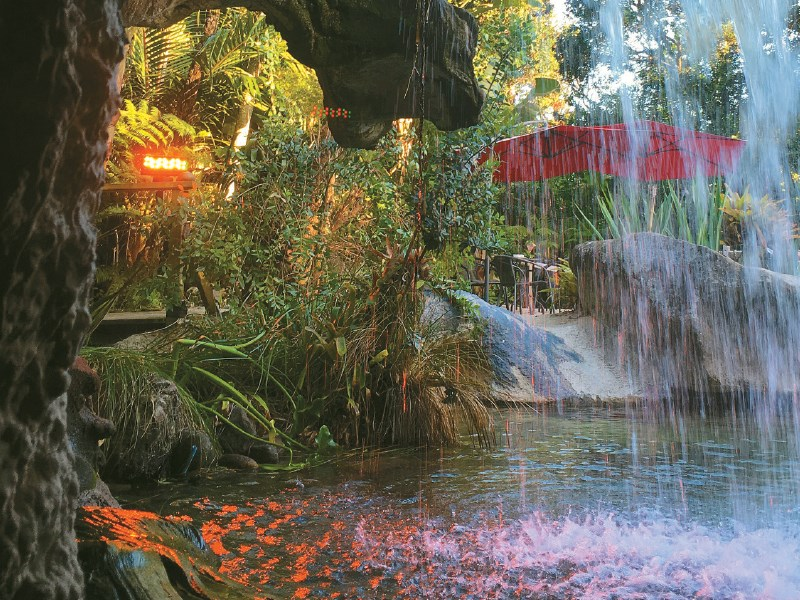 Escape for a day at The Lost Spring in Whitianga