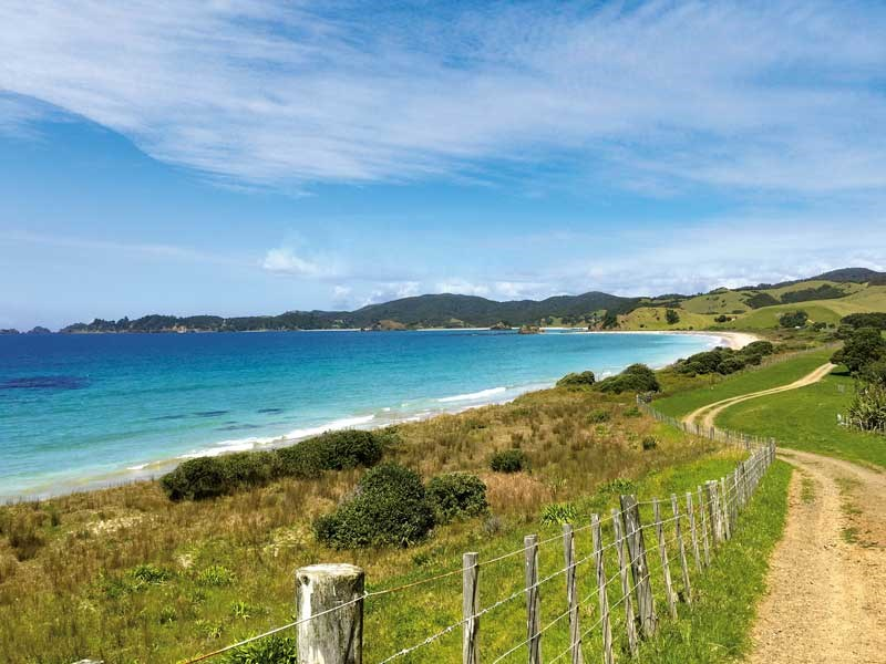 Beautiful Mimiwhangata Coastal Park