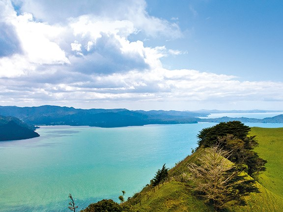 Road trips: the Awhitu Peninsula