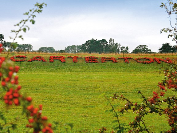 Road trips: exploring Carterton