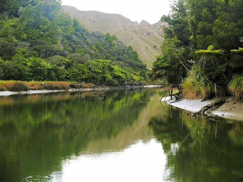Exploring the Mokau River aboard the MV Cygnet