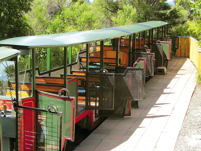 All aboard the conservation train at Driving Creek Railway