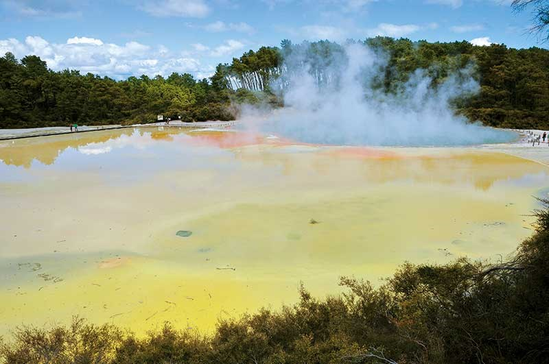 Rotorua: the best of Geyserland