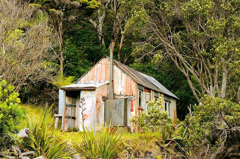 Three days on Great Barrier Island