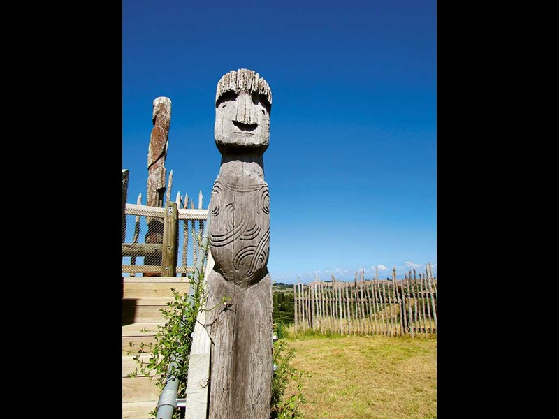 Things to see and do in Hawkes Bay