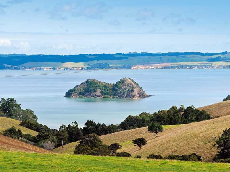 Roadtrips: North Kaipara