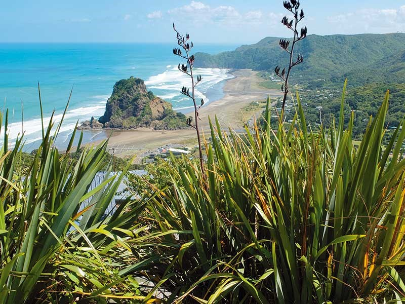 The best beaches on Auckland's west coast