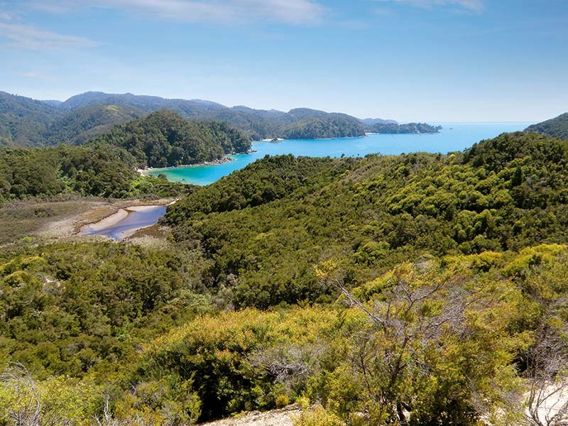 Walks in Takaka and Marahau
