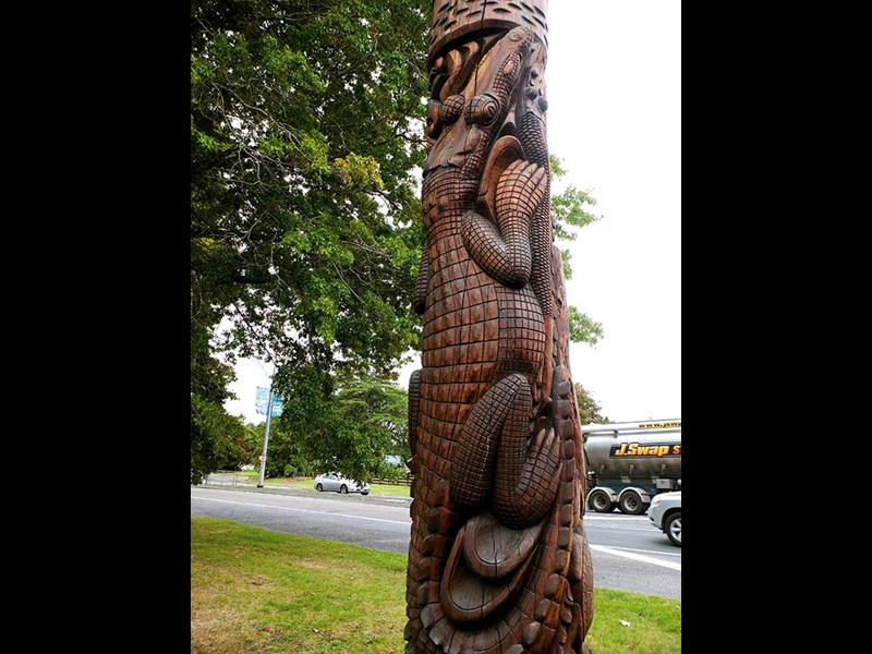 """Talking poles"" in Tokoroa"
