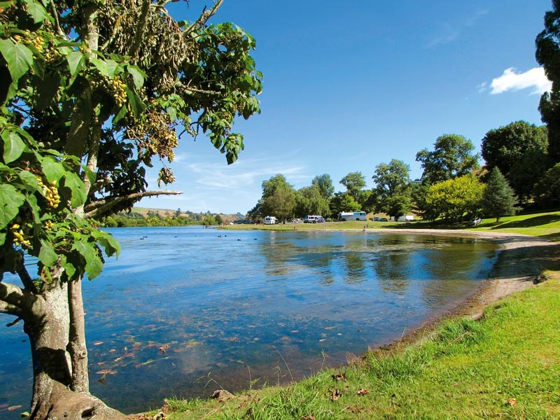 Waikato wanderings: things to see and do