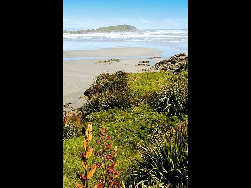 Exploring the wonders of Westport and Karamea