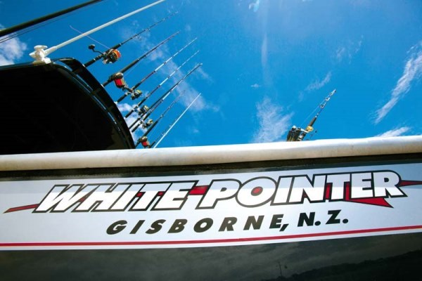 White Pointer 800 Sports Cruiser 03