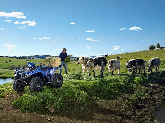 Yamaha Kodiak 450 ATV