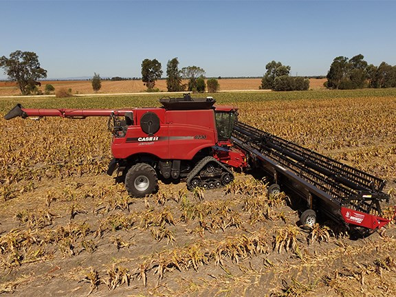 The 60ft (18-metre) Midwest Durus harvest draper platform, fitted to a Case IH class eight combine cutting sorghum crop on the Darling Downs.