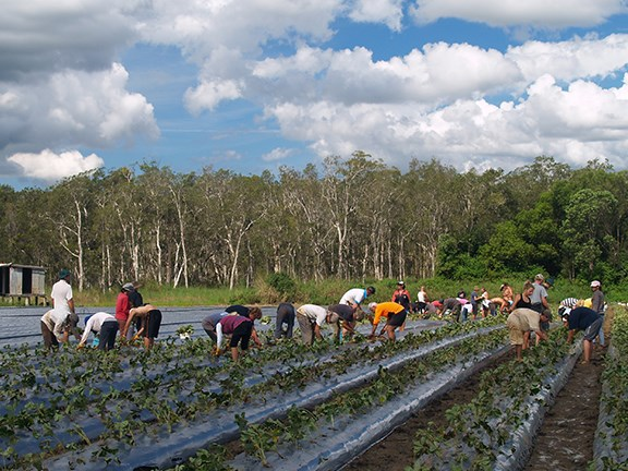 The Australian farming industry is worried about the impact that increasing tax on working backpackers will have on the availability of seasonal workers.