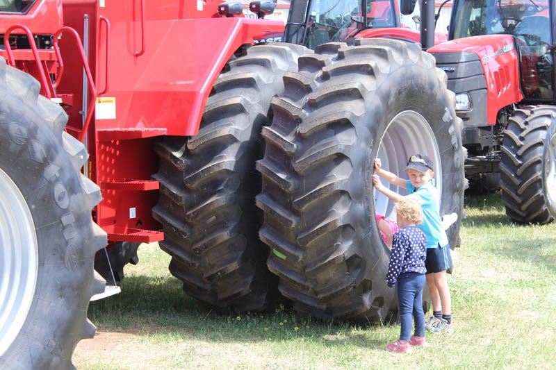 Elmore Field Days 2015 young patrons