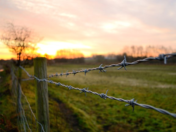 Most weather problems associated with fences are lessened by clearing wide fence lines that simply don't have trees or anything but grass nearby.