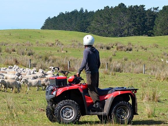 Further light has been shed on the Victorian Government's quad bike safety rebate scheme.
