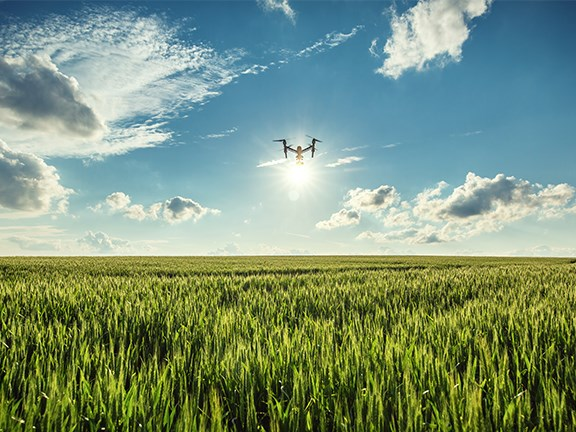 A WA university student's experiment has shown how drones can be used to track and improve crop health.