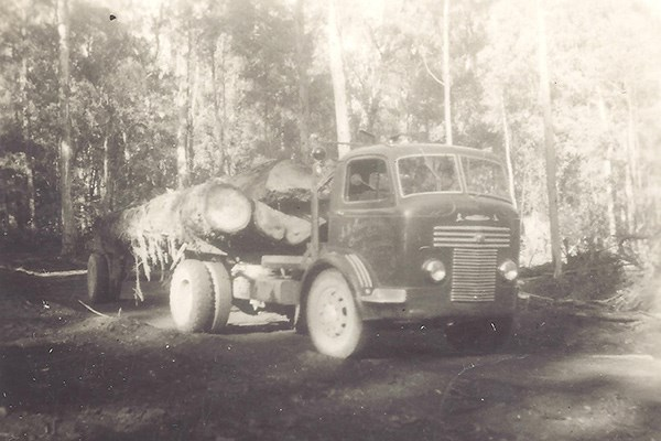 Roger's father Albert Marchetti carted logs with this Commer in the mid-1950s.
