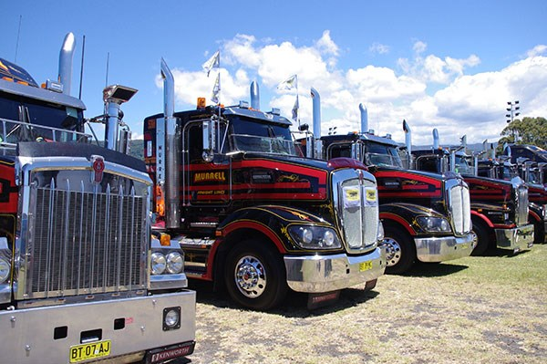 The Murrell Freight Lines fleet at Albion Park.