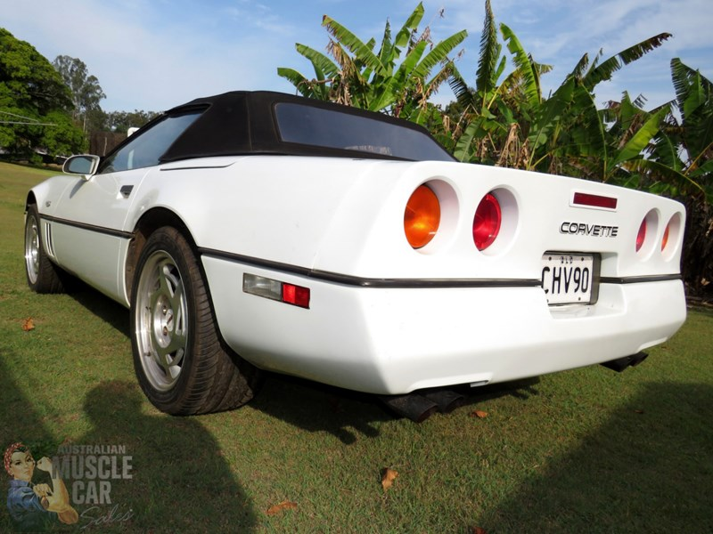 C4Corvette rear side