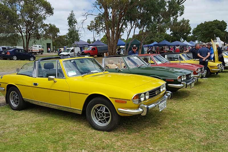 69 triumph stags