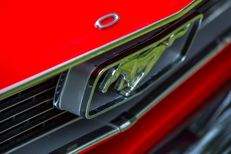 ford mustang pony badge grille