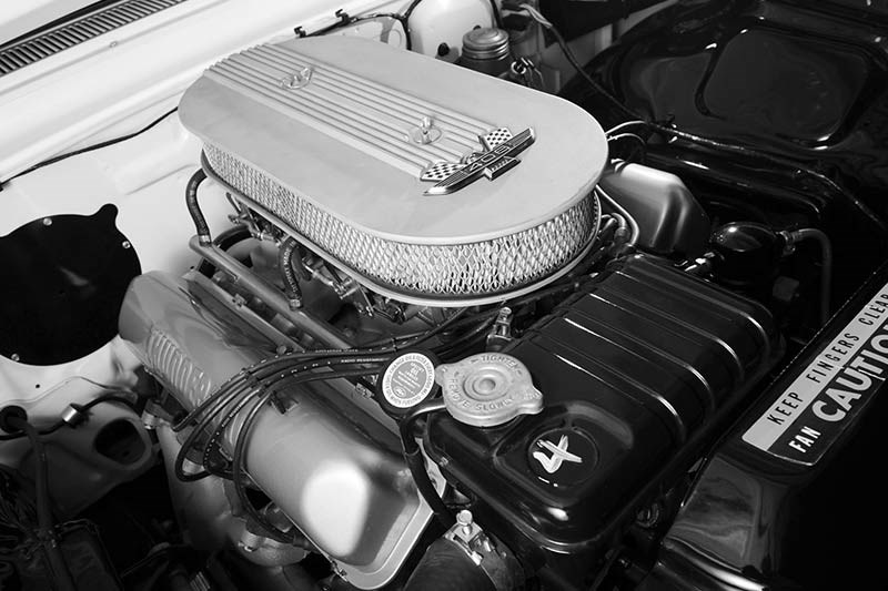 ford galaxie engine
