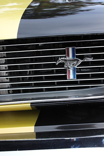 ford shelby mustang grille