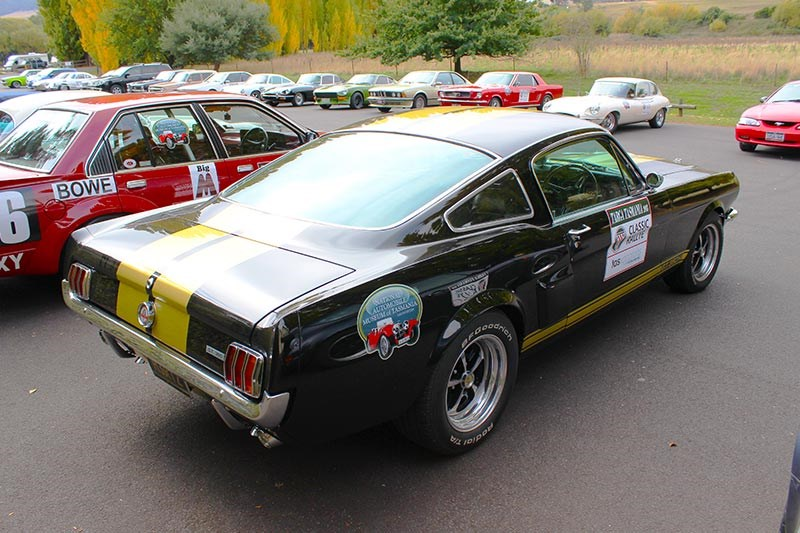ford shelby mustang rear