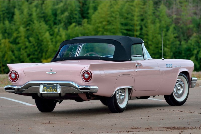 Minter Thunderbirds Dusk Rose rear