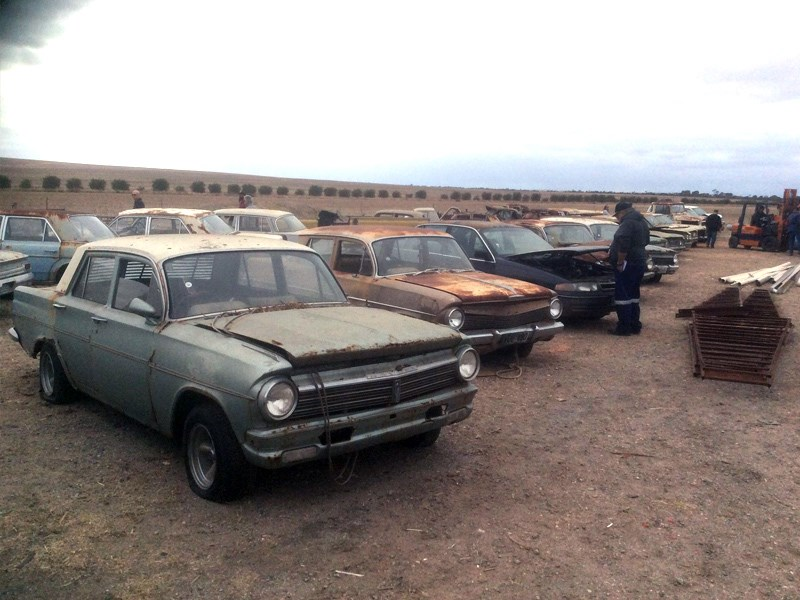 Skippy collection cars