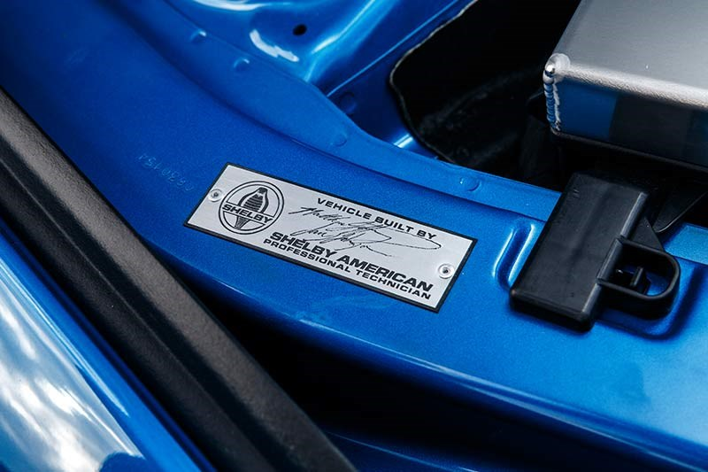 shelby super snake plaque