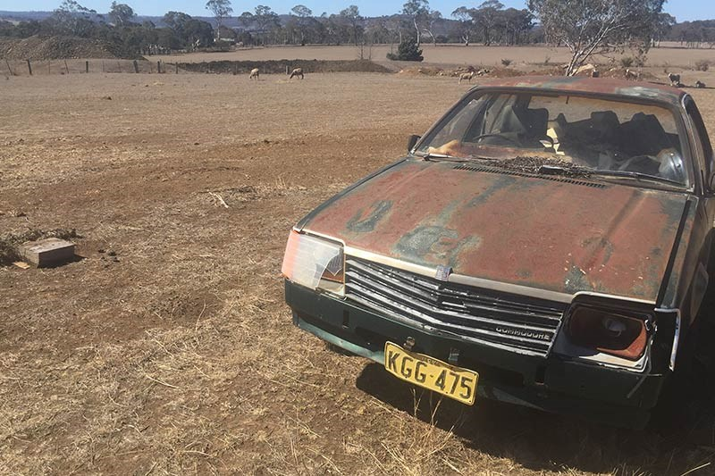 holden vb commodore paddock find