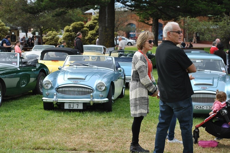 21 Austin Healey 3000 line up with Helen Bishop