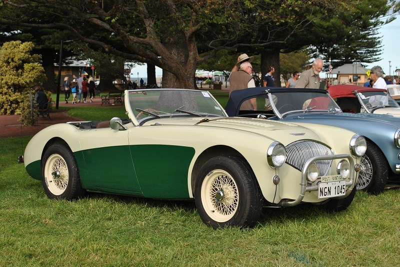 Austin Healey 100 BN1 Robert and Margaret Duddington 02