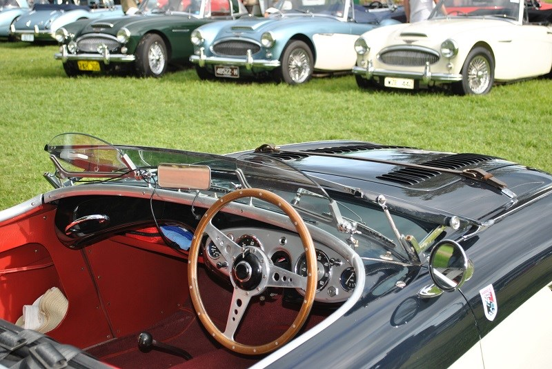 Austin Healey 100 BN1 owner unknown interior shot with 3000s in background 01