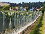 Destinations: Martinborough