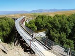 Otago Rail Trail: camping spots and attractions