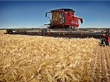 Case IH introduces 2013 Axial-Flow combine harvesters