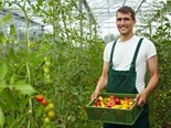 Organic farming is one of the top industries expected to soar in 2014, after gemstone mining and superannuation.