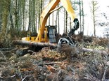 Forestry: the perfectly built logging excavator