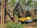 Volvo EC380DL is being used to fall, trim, and process seven-tonne-plus trees into logs