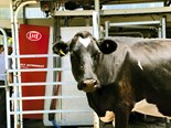 Business Profile: Lely Robotic Milking