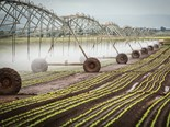 Farm advice: Managing irrigation