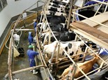 Global dairy outlook predicts 14 million dairy farms to go by 2030