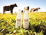 Family business brings glass milk bottles back to Canterbury